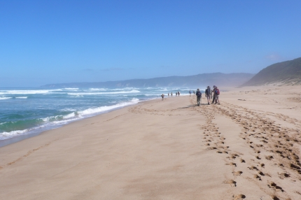 Great Ocean Walk with Active Journeys - escorted adventure travel or self-guided adventure travel tours and holidays