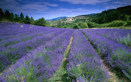 Provence - Hiking Getaway with Active Journeys - escorted adventure travel or self-guided adventure travel tours and holidays