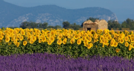 A Ride in Provence with Active Journeys - escorted adventure travel or self-guided adventure travel tours and holidays