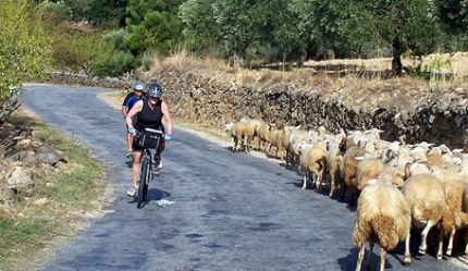 Portugal Cycling in the Douro Region with Active Journeys - escorted adventure travel or self-guided adventure travel tours and holidays